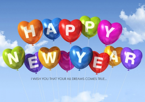 Conduit de lumiere Lightway®_happy-new-year-2014